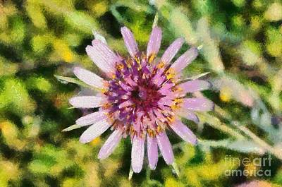 Paint Painting - Salsify Wild Flower by George Atsametakis