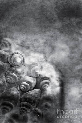 Sea Treasures Print by VIAINA Visual Artist
