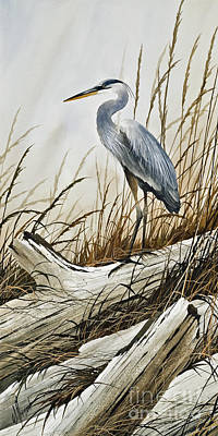 Secluded Driftwood Shore Print by James Williamson