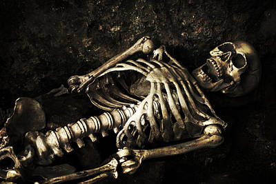 Skeleton  Print by Amanda And Christopher Elwell