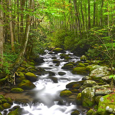 Smoky Mountain Stream Print by Frozen in Time Fine Art Photography