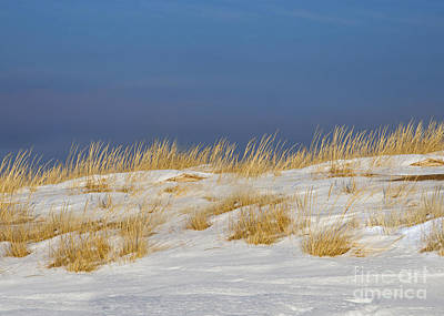 Snow Covered Dunes Print by Twenty Two North Photography