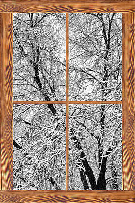 Picture Window Frame Photos Art Photograph - Snowy Tree Branches Barn Wood Picture Window Frame View by James BO  Insogna