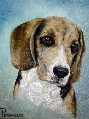 Soul Of  A Beagle Print by Beverly Pegasus