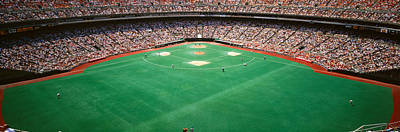 Spectator Watching A Baseball Match Print by Panoramic Images