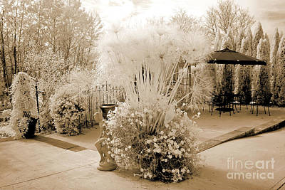 Surreal Ethereal Infrared Sepia Nature Landscape  Print by Kathy Fornal