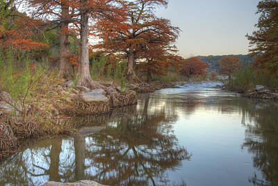 Texas Hill Country Images - Cypress Of Pedernales Falls State Pa Print by Rob Greebon