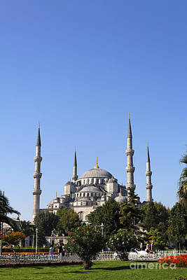 The Blue Mosque Istanbul Print by Robert Preston
