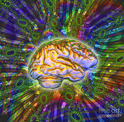 Telepathy Photograph - The Brain by Dennis D. Potokar