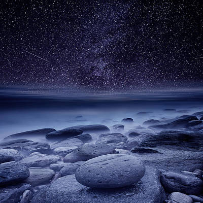 The Cosmos Print by Jorge Maia
