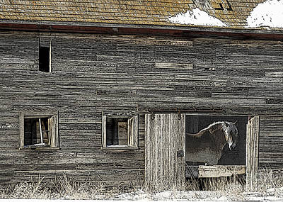 The Old Barn Print by Judy Wood