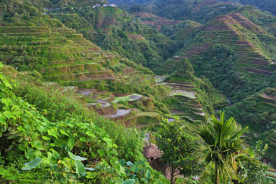 Philippines Photograph - The Rice Terraces Of The Philippine by Keren Su