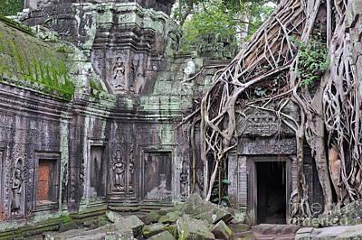 Tree Roots On Ruins At Angkor Wat Print by Sami Sarkis