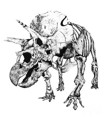 Extinct And Mythical Drawing - Tri's Bones by Penelope Fedor