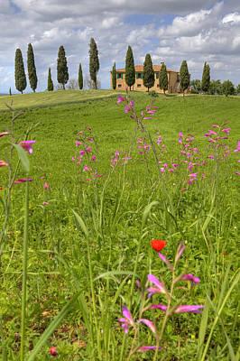 Siena Photograph - Tuscany - Pienza by Joana Kruse