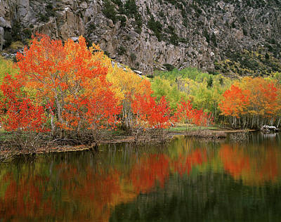 Usa, California, Sierra Nevada Print by Christopher Talbot Frank