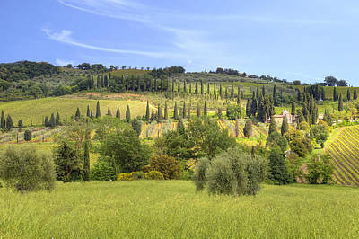 Vineyard Photograph - Val D'orcia by Joana Kruse
