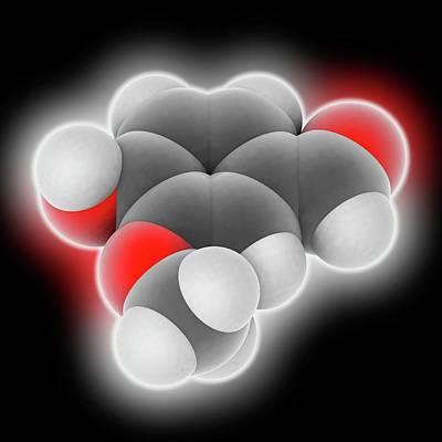 Vanillin Molecule Print by Laguna Design