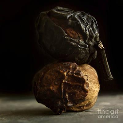 Healthy Eating Photograph - Walnut by Bernard Jaubert