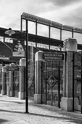 Baltimore Baseball Parks Photograph - Watch Out For Batted Balls by Susan Candelario