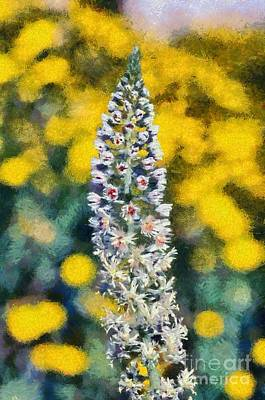 Flora Painting - Wild Mignonette by George Atsametakis