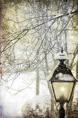 Snow Covered Trees Digital Art - Winter Stillness by Julie Palencia