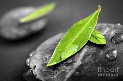 Pampering Photograph - Zen Stones by Elena Elisseeva