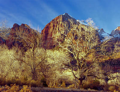 Striking Photograph - Zion National Park, Utah by Scott T. Smith