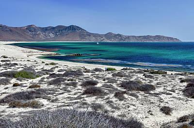Isla De Espiritu Santo, Baja, Mexico Print by Mark Williford