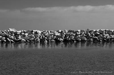 Photograph - 22 by Joey  Maganini