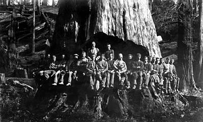 22 Loggers In Redwood Undercut -- 1884 Print by Daniel Hagerman