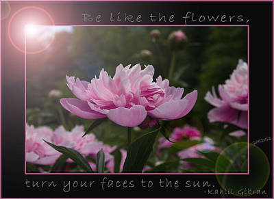Be Like The Flowers... Print by Patti Deters