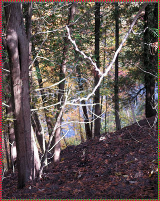 Digitalart Mixed Media -    Canadian Fall Season Colors Oakville Ontario Lyon Ridge Trail River Stream Picknic Spot Bird Watc by Navin Joshi