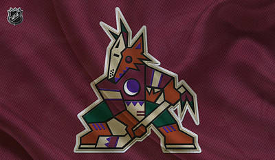 Hockey Photograph - Phoenix Coyotes by Joe Hamilton
