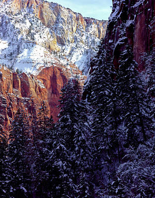 Striking Photograph - Zion National Park, Utah by Scott T. Smith