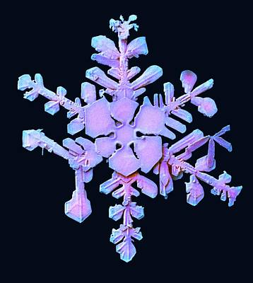 Crystalline Photograph - Snowflake by Ars/us Dept Of Agriculture