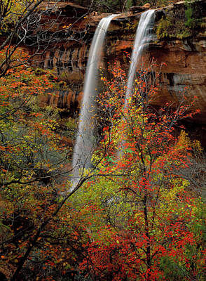 Vivid Fall Colors Photograph - Zion National Park, Utah by Scott T. Smith