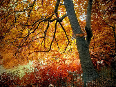 Maple Leaf Digital Art - Ablaze by Jessica Jenney