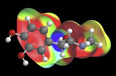 Adrenaline Photograph - Adrenaline Molecule by Alfred Pasieka