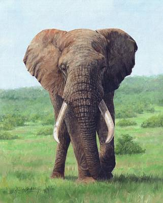 Elephants Painting - African Elephant by David Stribbling
