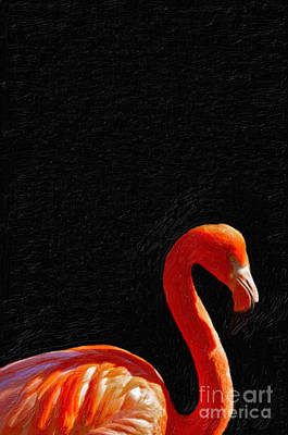 American Pink Flamingo Print by Celestial Images