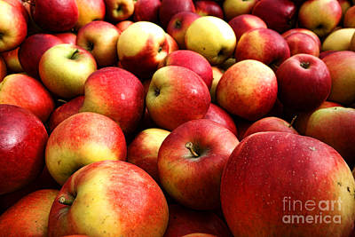 Abundance Photograph - Apples by Olivier Le Queinec