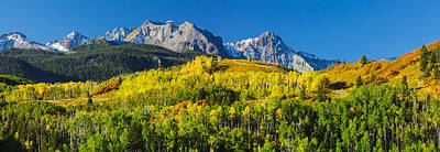 Oak Photograph - Aspen Trees With Mountains by Panoramic Images