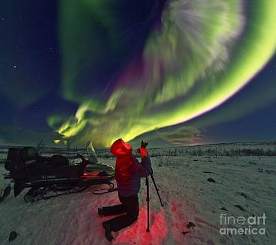 Aurora Borealis, Lapland, Sweden Print by Babak Tafreshi, Twan