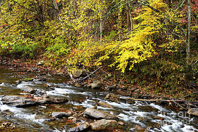 Thomas R. Fletcher Photograph - Autumn Elk River by Thomas R Fletcher
