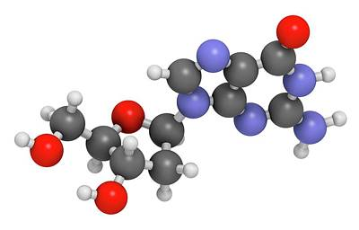 Deoxyribonucleic Acid Photograph - Deoxyguanosine Nucleoside Molecule by Molekuul