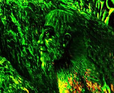 Genio Digital Art - Detail From Shaman by Genio GgXpress