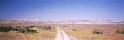 Dirt Road Passing Through A Landscape Print by Panoramic Images