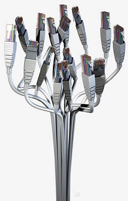 Ethernet Abstract Bouquet Print by Allan Swart