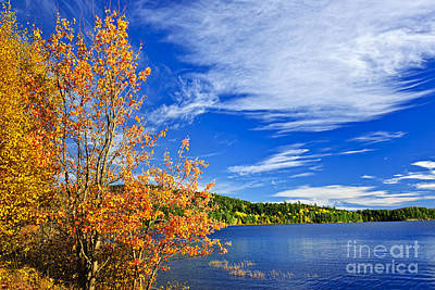 Clouds Photograph - Fall Forest And Lake by Elena Elisseeva
